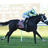 Thundering Sky wins the 2016 Pebbles Stakes.<br /> Coglianese Photos/Chelsea Durand