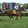 Coasted wins the 2016 P. G. Johnson Stakes<br /> Coglianese Photos