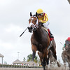 Stanford wins the 2016 Harlan's Holiday<br /> Coglianese Photos/Leslie Martin