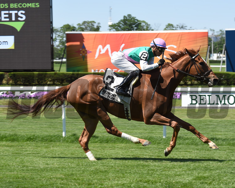 Suffused wins the 2016 Belmont Coronation Invitational.<br /> Conglianese Photos