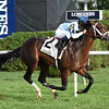 Made You Look wins the With Anticipation Stakes at Saratoga Aug. 31.<br /> Coglianese Photo/Susie Raisher