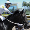 Dream of Me wins the 2016 Florida Sire Unbridled Stakes.<br /> Coglianese Photos/Lauren King