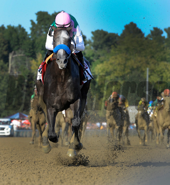 Arrogate heads to the wire and a track record win in the 147th running of the Travers Stakes at Saratoga Race Course August 27, 2016 in Saratoga Springs, N.Y.  Photo by Skip Dickstein