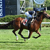 Oscar Performance - Maiden Win, August 20, 2016<br /> Coglianese Photos