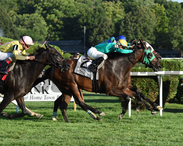 King Kreesa wins the 2016 West Point Stakes.<br /> Coglianese Photos