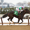 Lockdown - Maiden Win, Aqueduct, December 17, 2016                 <br /> Full sister to Close Hatches<br /> Coglianese Photos