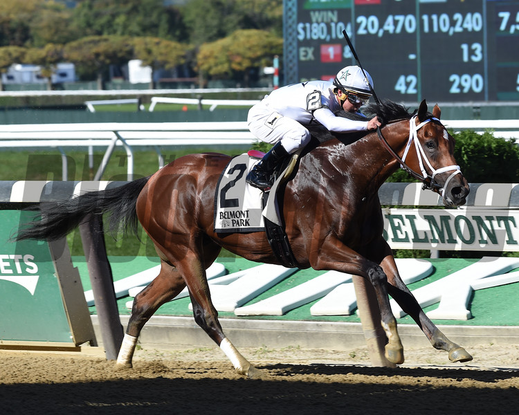 Theory wins the 2016 Futurity.<br /> Coglianese Photos