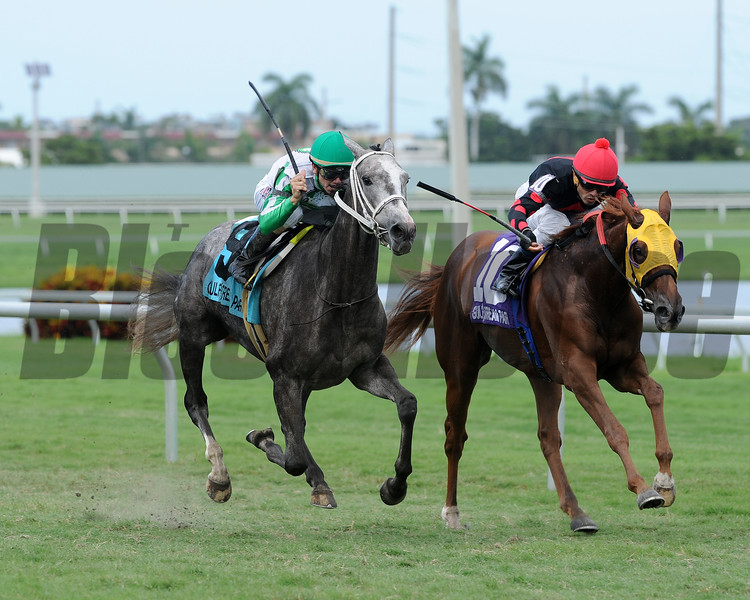 Silver Diva wins the 2016 Our Dear Peggy Stakes.<br /> Coglianese Photos/Lauren King