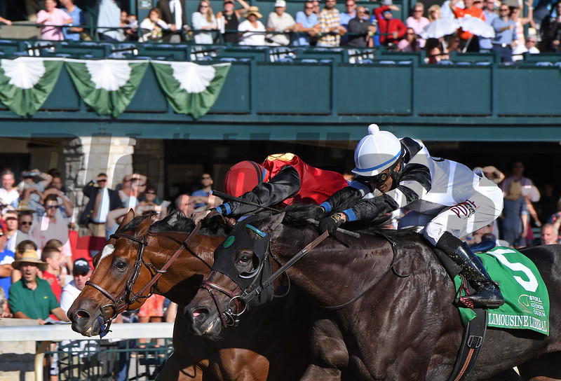 A.P. Indian with Joe Bravo wins the Phoenix at Keeneland on Friday Oct. 7, 2016  in Lexington, Ky. Photo by Anne M. Eberhardt