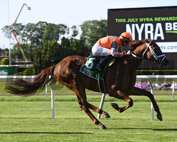 Da Big Hoss wins the 2016 Belmont Gold Cup Invitational.<br /> Coglianese Photos/Chelsea Durand