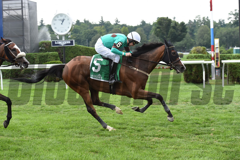 Portrade wins the 2016 New York Turf Writers Cup.<br /> Coglianese Photos