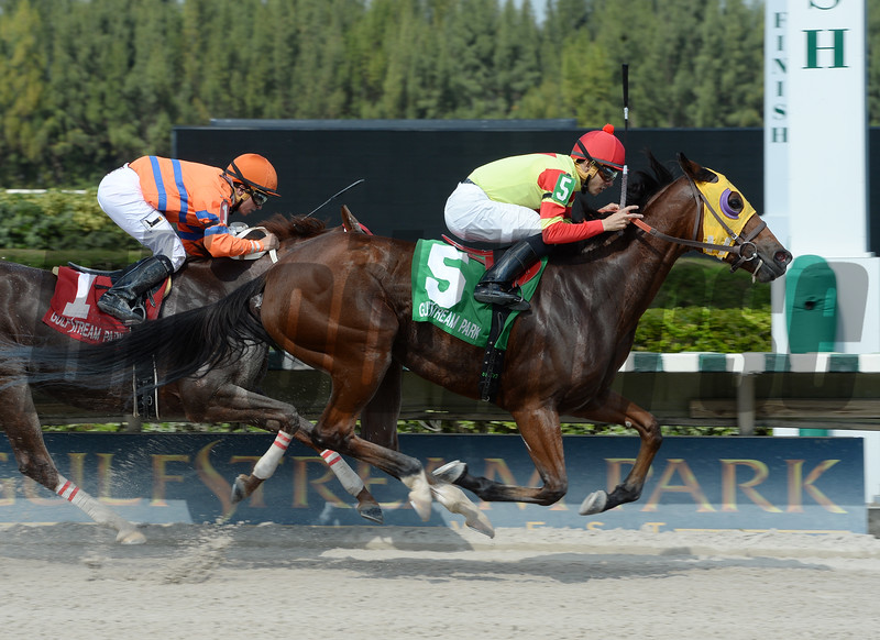 Moment of Delight wins the 2016 Millions Distaff Preview Stakes<br /> Coglianese Photos/Leslie Martin