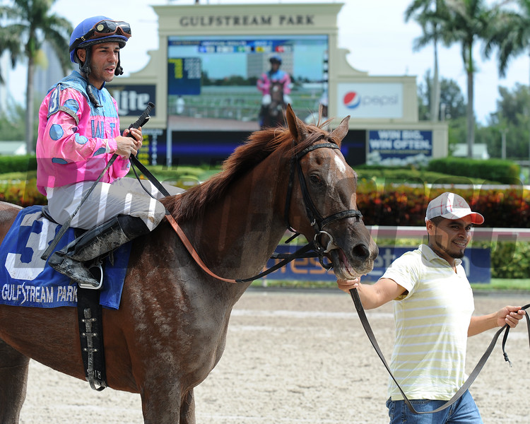 She's Incredible wins the 2016 Florida Sire Series - Meadow Star Stakes.<br /> Coglianese Photos/Lauren King