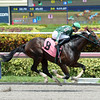 Skinflint - Maiden Win, Gulfstream, August 6, 2016      <br /> Coglianese Photos/Leslie Martin