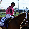Catch A Glimpse, Florent Geroux up, wins the GR.3 Edgewood at Churchill Downs.<br /> Dave Harmon Photo