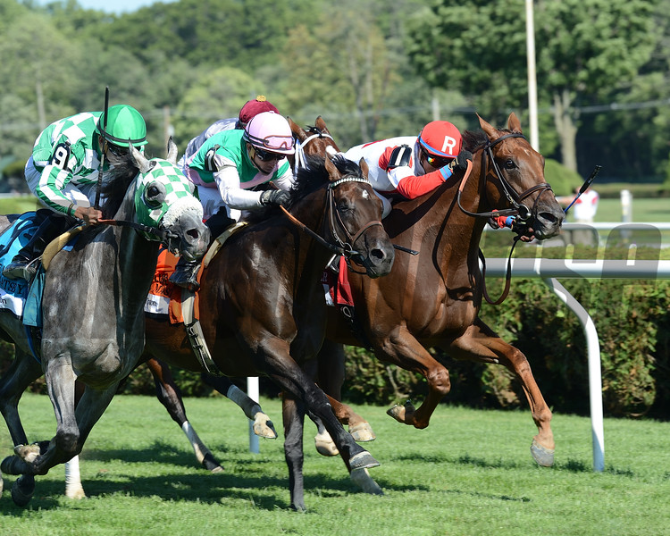 Shining Copper wins the 2016 Lure<br /> Coglianese Photos/Chris Rahayel