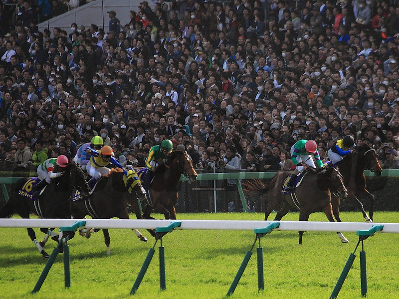 Dee Majesty (JPN) wins the Satsuki Sho (Japanese 2,000 Guineas) at Nakayama Racecourse April 17, 2016. Makahiki (JPN) second, Satono Diamond (JPN) third, and Air Spine (JPN) fourth.<br /> Naoji Inada Photo
