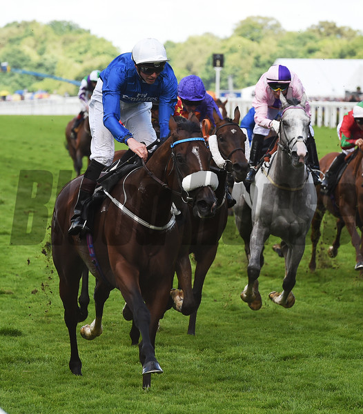 Portage wins the 2016 Royal Hunt Cup (Heritage Handicap)<br /> Royal Ascot, UK <br /> 6/15/16<br /> Mathea Kelley