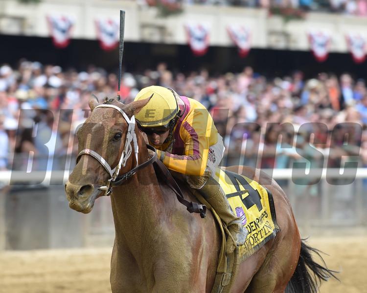 Cavorting wins the 2016 Ogden Phipps Stakes. <br /> Coglianese Photos/Adam Mooshian