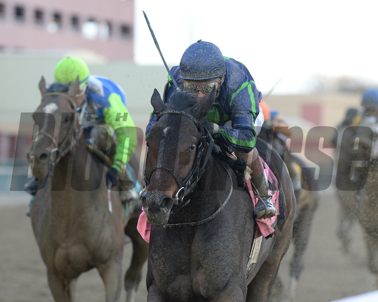 Mo Town wins the Remsen Stakes (gr. II) at Aqueduct on November 26, 2016.