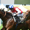 Profitable wins King's Stand S at Royal Ascot