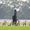 Sinhalite wins the Yushun Himba Japanese Oaks.<br /> Masakazu Takahashi Photo