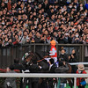 Shonan Pandora (JPN) wins the Japan Cup in Japan Nov. 29.<br /> Naoji Inada Photo