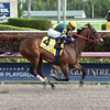 Shaft of Light wins the 2016 Claiming Crown Rapid Transit<br /> Coglianese Photos/Leslie Martin
