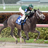 Bode's Dream wins the 2016 House Party Stakes.<br /> Coglianese Photos/Lauren King