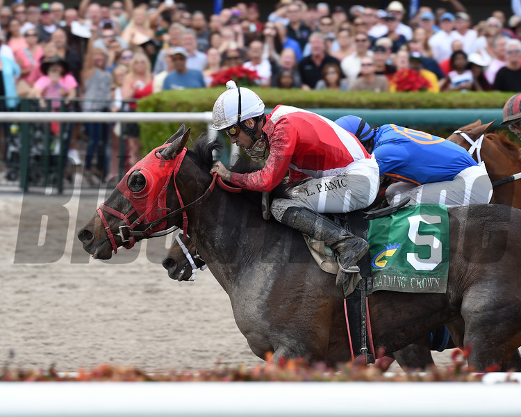 Tormenta de Oro wins the 2016 Claiming Crown Glass Slipper Stakes<br /> Coglianese Photos/Lauren KIng