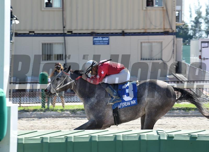 Sweetontheladies wins the 2016 Juvenile Sprint Stakes<br /> Coglianese Photos