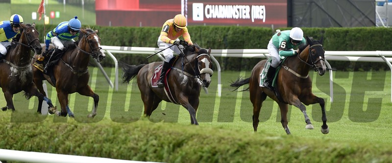 Portrade wins the 2016 New York Turf Writers Cup.<br /> Skip Dickstein Photo