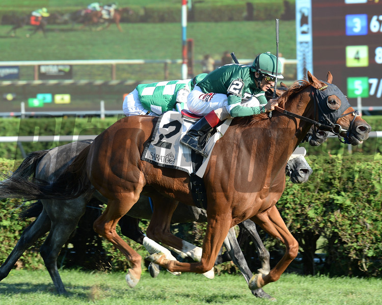 Ring Weekend wins the Bernard Baruch Stakes at Saratoga Sept. 5, 2016.<br /> Coglianese Photos