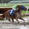 Lirica wins the 2016 Hut Hut Stakes<br /> Coglianese Photos/Leslie Martin