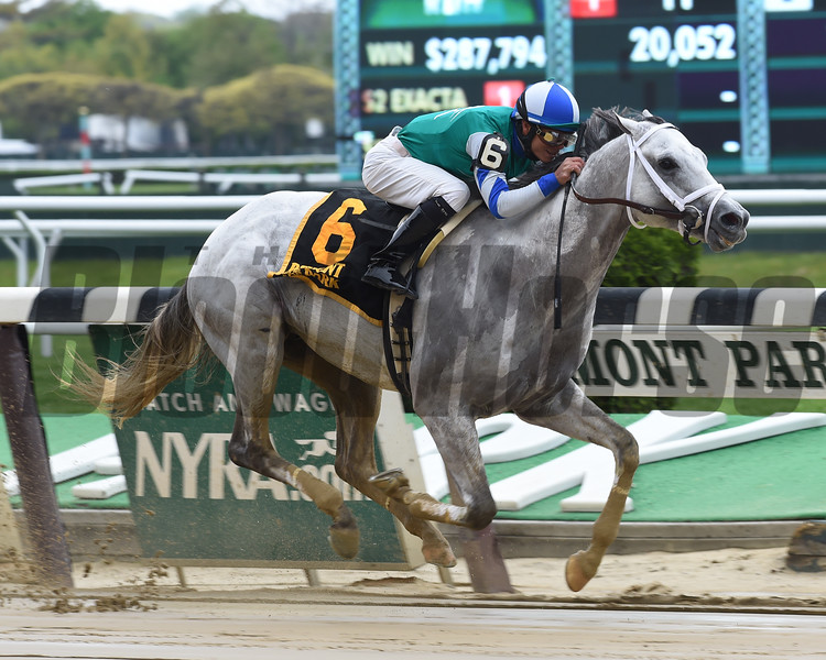 Anchor Down wins the 2016 Westchester Stakes.    <br /> Coglianese Photos