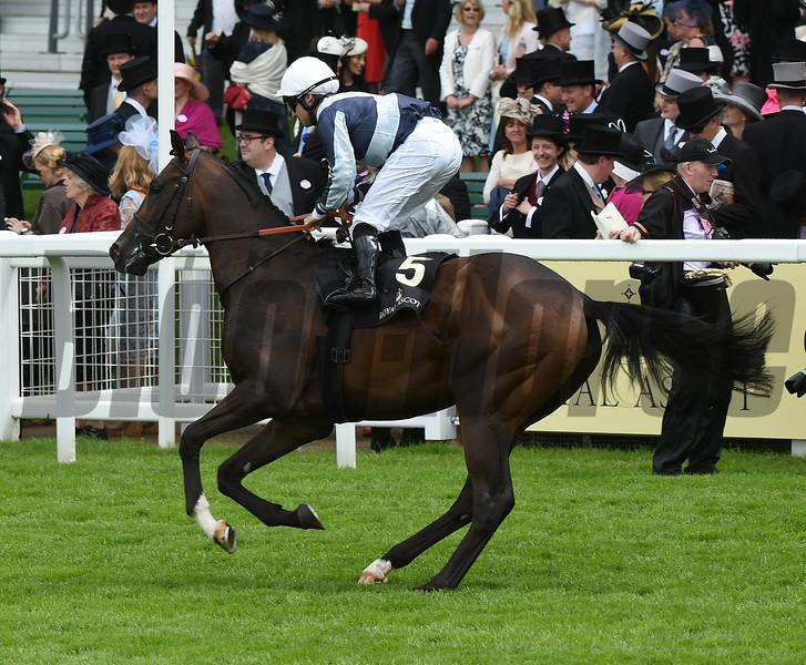 Bolting - Royal Ascot, UK <br /> 6/15/16<br /> Mathea Kelley