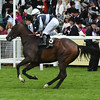Bolting - Royal Ascot, UK <br /> 6/15/16<br /> Mathea Kelley