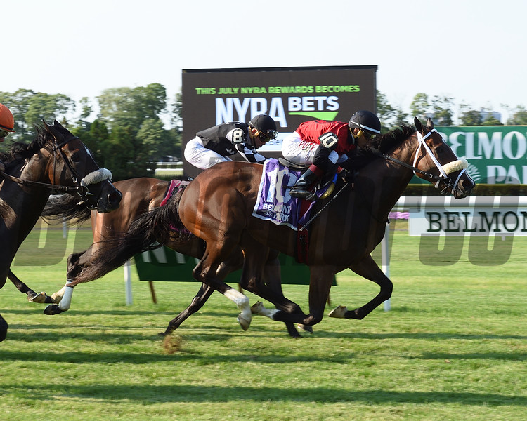 Louisville First wins the New York Stallion Stakes June 26, 2016.<br /> Coglianese Photos