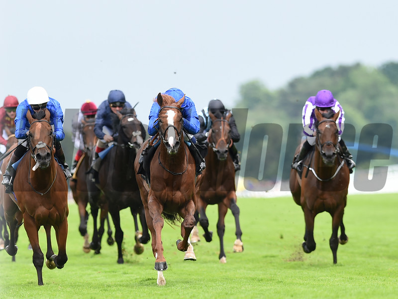 Hawkbill wins the Tercentary Stakes at Royal Ascot June 16, 2016<br /> Mathea Kelley Photo