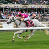 Tapitation wins the Kingston Stakes at Belmont Park May 30, 2016<br /> Coglianese Photos/Joe Labozzetta