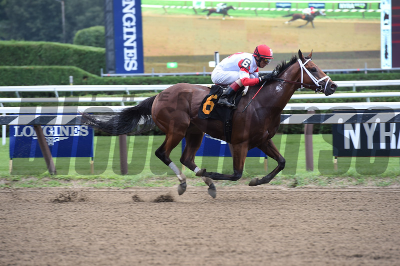 Baby Bear's Soup - WCL win, Saratoga, August 13, 2016<br /> Coglianese Photos