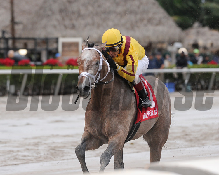 Fact Finding wins the 2016 Smooth Air Stakes.<br /> Coglianese Photos/Kenny Martin