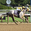 Jules N Rome wins the 2016 Saratoga Dew Stakes.<br /> Coglianese Photos