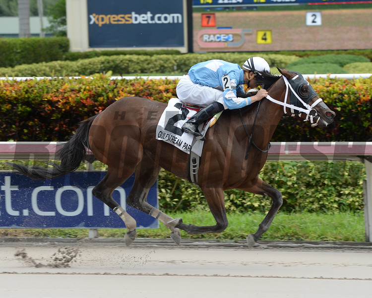 Cajun Delta Dawn wins the 2016 Florida Sire Series - Susan's Girl Division.<br /> Coglianese Photos/Leslie Martin