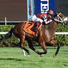 Our Way wins the 2016 Better Talk Now Stakes.<br /> Coglianese Photos