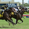 Whiskey Train wins the 2016 Armed Forces Stakes<br /> Coglianese Photos/Leslie Martin