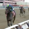 Mo Town wins the 2016 Remsen Stakes<br /> Coglianese Photos/Joe Labozzetta