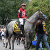 Big Gray Rocket Mike Smith Champagne Chad B. Harmon