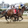 Verve's Tale wins the 2016 Comely Stakes<br /> Coglianese Photos/Susie Raisher