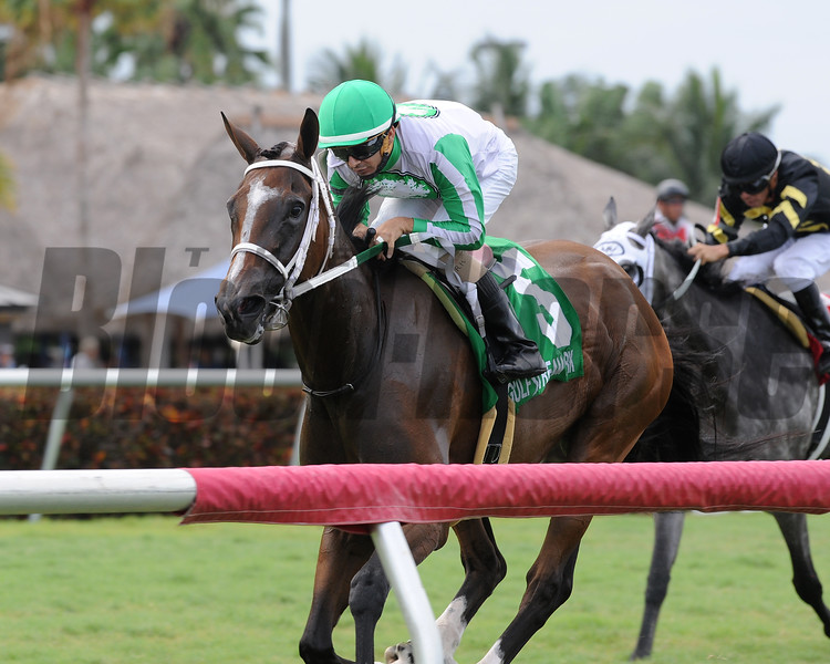 Pink Poppy wins the 2016 Spook Express Stakes.<br /> Coglianese Photos/Lauren King